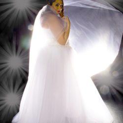 Brautkleid und Schleier mit Hintergrundlicht